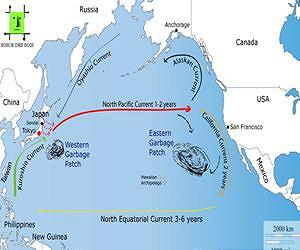 pacific ocean currents map  Earthquake and Tsunami in